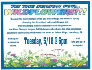 Tis the Season for Wildflowers